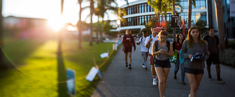 Students walking on Palms Walk with Hannon Library in the background at sunset
