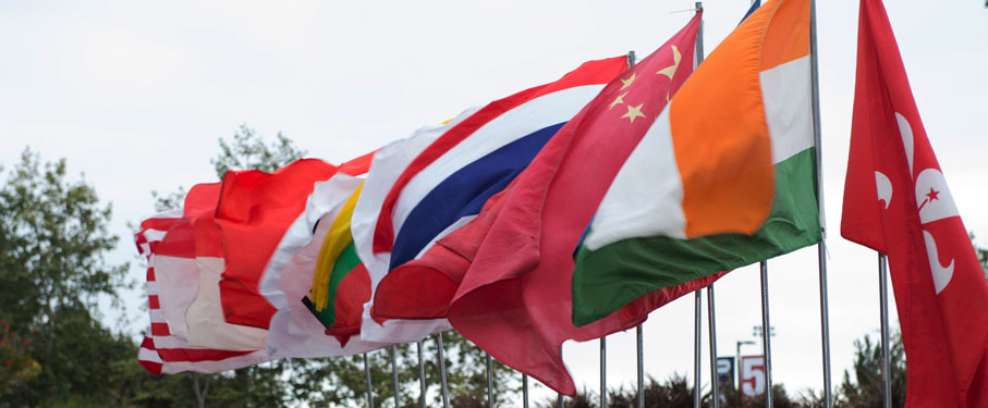 International Flags Flapping