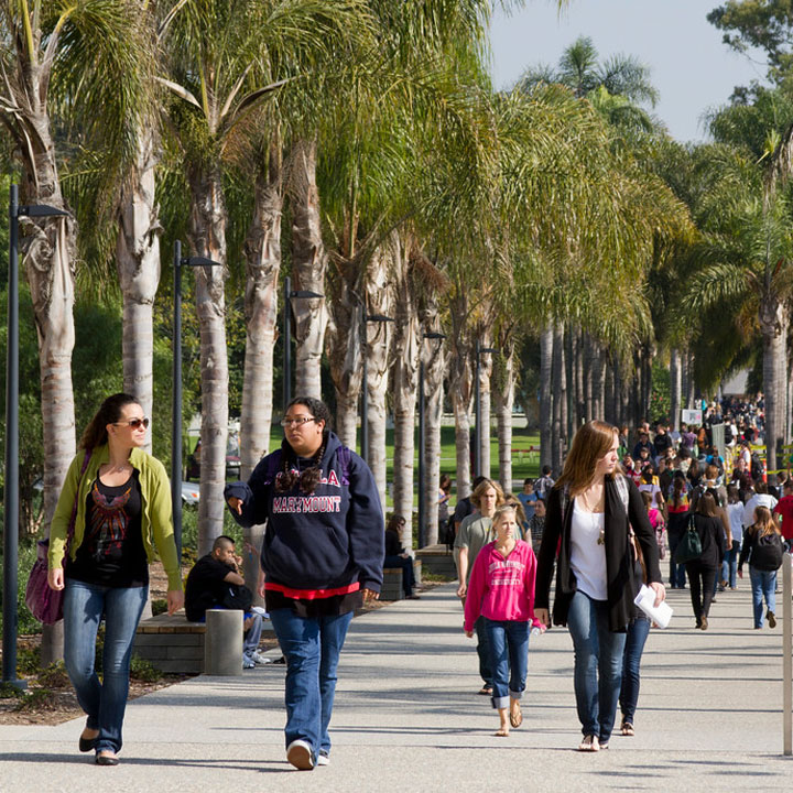 lmu students walking along palm walk during sunny day