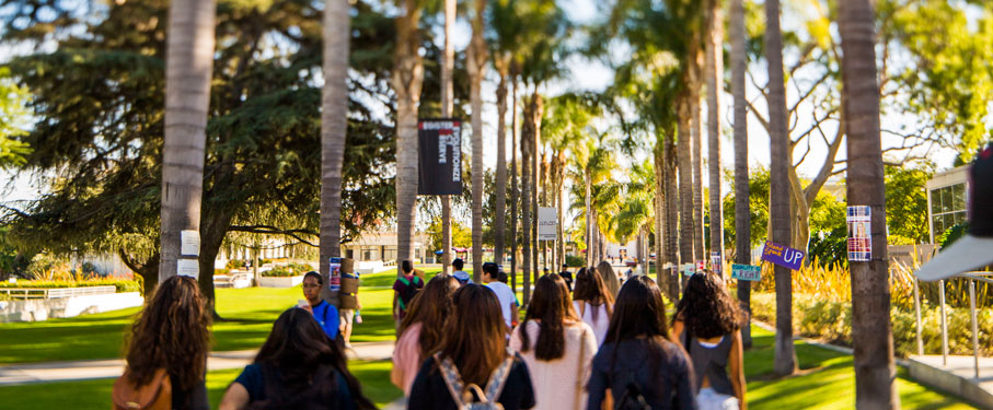 LMU students walking through Palm Walk
